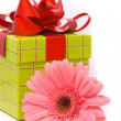 Pink gerber flower and gift box — Stock Photo