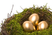 Golden eggs in a nest — Stock Photo