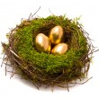 Gold eggs in nest — Stock Photo #2147393