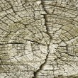 Old wood texture, hi quality background — Stock Photo