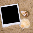 Photo frame with sea shells — Stock Photo #2149554