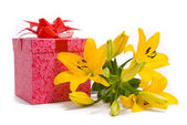 Yellow lily and gift box — Stock Photo