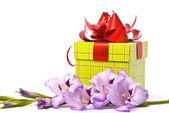 Hermoso florero gladiolos y la caja. — Foto de Stock