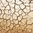 Stock Photo: Cracked ground