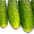Fresh cucumbers on studio white — Stock Photo