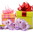 Beautiful gladiolus and gift box — Foto Stock #2470270