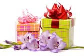 Beautiful gladiolus and gift box — Stock Photo