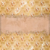 Vintage ragged background — Stock Photo