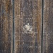 Old wood background — Stock Photo #2481043