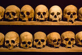 Human skulls in a crypt — Stock Photo
