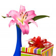 Pink lily and gift box on a white — Stock Photo #2581179