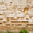 Medieval bricks wall — Stock Photo