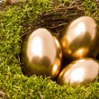 Stock Photo: Three eggs on nest