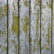 Grunge wood background — Stock Photo #2648950