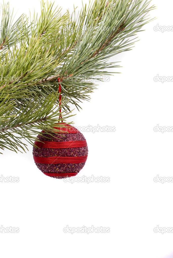 Christmas red ball  Stock Photo #2648825