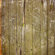 Stock Photo: Grunde wall texture