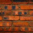 Grunde wall texture — Stock Photo