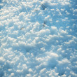 Texture of snow in the springtime — Stock Photo