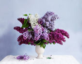 Nature morte avec un bouquet de lilas — Photo