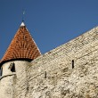 Old town and wall in Tallinn — Stock Photo #2678989