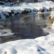 Stock Photo: Winter brook