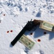 Gun in snow — Stock Photo