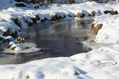 Winter brook — Stock Photo