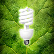 Eco energy conception — Stock Photo