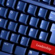 Leadership conceptual — Stock Photo