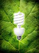 Eco energy conception — Stock Photo