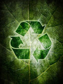Ecological recycling — Stock Photo