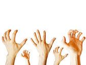 Человеческие руки — Стоковое фото