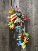 Colorful cloth pegs — Stock Photo
