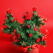 Christmas trees — Stock Photo #1542261