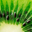 Slice of juicy kiwi fruit — Stock Photo