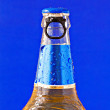 Stock Photo: Bottle of beer