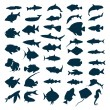 Royalty-Free Stock Vector Image: Fish icon