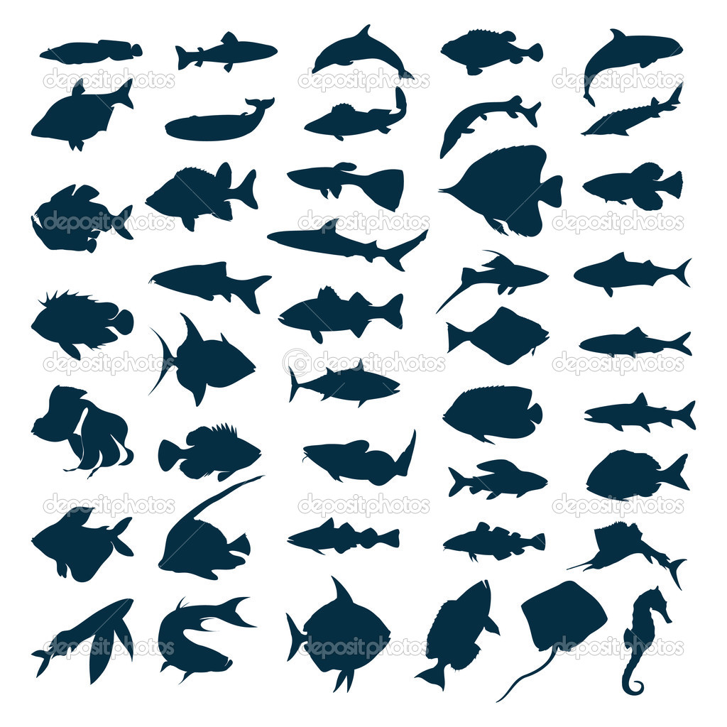 Silhouettes of sea and lake fishes. A vector illustration — Stock Vector #1424715