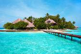 Wyspa na oceanie. raj! — Zdjęcie stockowe