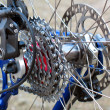 Stock Photo: Mountain Bike rear wheel