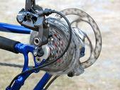 Bike rear wheel — Stock Photo