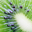 Kiwi close-up — Stock Photo
