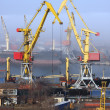 Cranes in harbor — Stock Photo #1436230