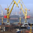 Cranes in harbor — Stock Photo