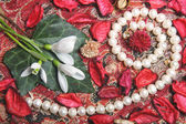 Still life with pearls and flowers — Stock Photo