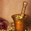 Old bronze mortar with herbs — Stock Photo #2028906