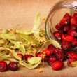Rose hips and dry linden blossom - Stock Photo