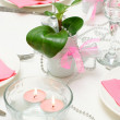 Holiday tableware - Stock Photo