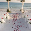Beach Wedding Path Rose Petals — Stock fotografie #1384663