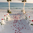 Beach Wedding Path Rose Petals - Stock Photo